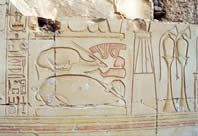 Meat Offerings, Ribs, Oxen & Gazelle, Seti I for his temple at Abydos
